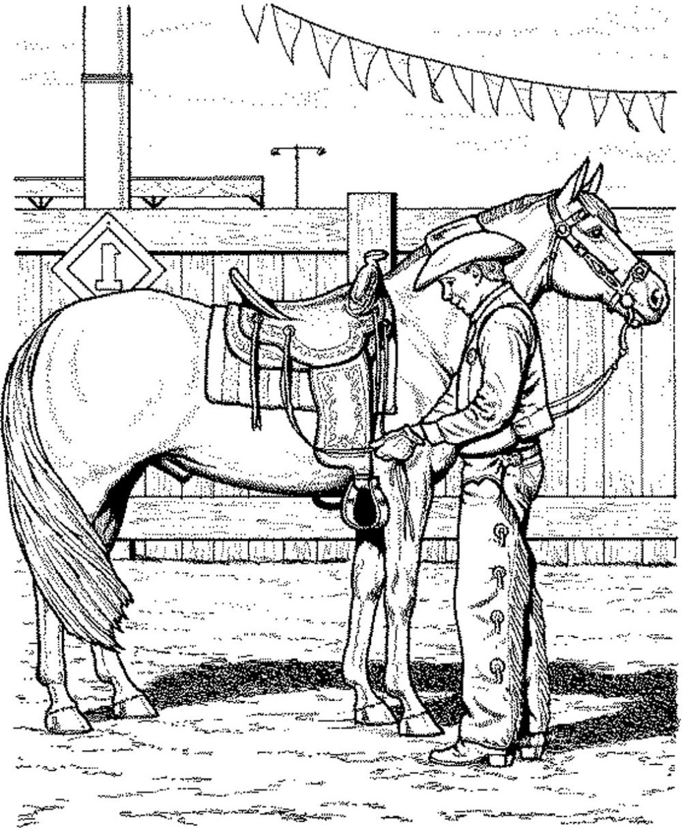 Horse Coloring Page Coloring Page Incredible Printable Horse Coloring Pages