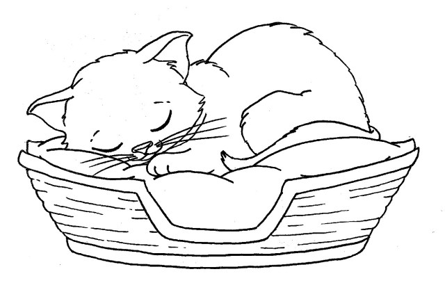 Kittens Coloring Pages Puppy Coloring Pages Best For Kids Bokamosoafrica Org Breathtaking