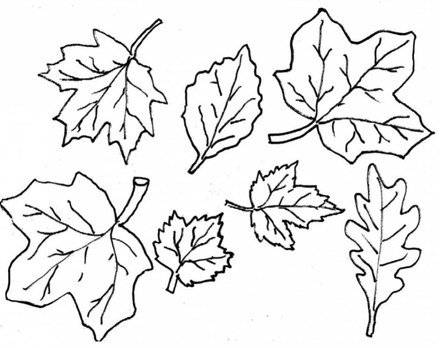 Leaf Coloring Page Coloring Pages Fall Leaves Coloringages Christianage Freeinterest