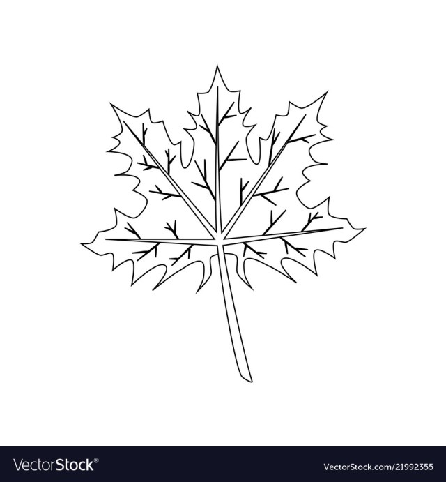 Leaf Coloring Page Maple Leaf Coloring Page Royalty Free Vector Image