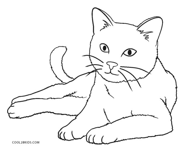 Nyan Cat Coloring Pages Nyan Cat Coloring Page Coloring Pages