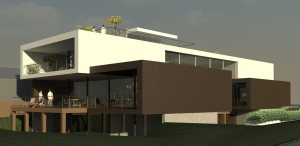 Entity Developments Custom Single Family Home Windermere E