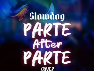 DOWNLOAD : Slowdog – Parte After Parte (Cover)