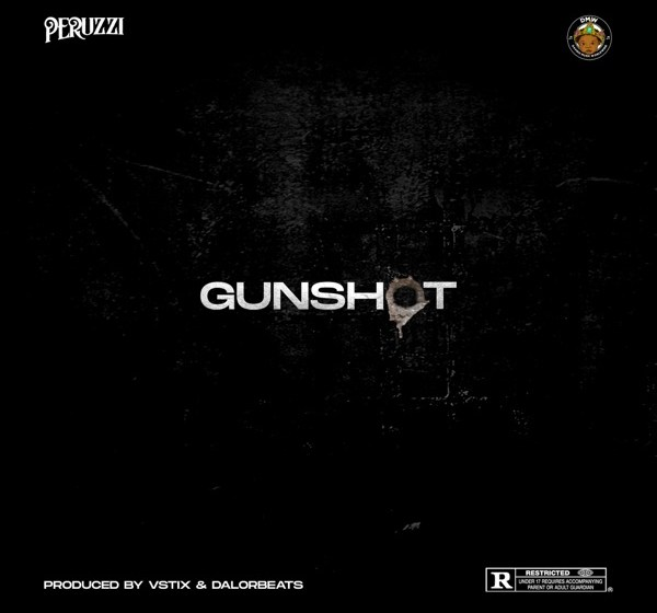AUDIO : Peruzzi – Gunshot