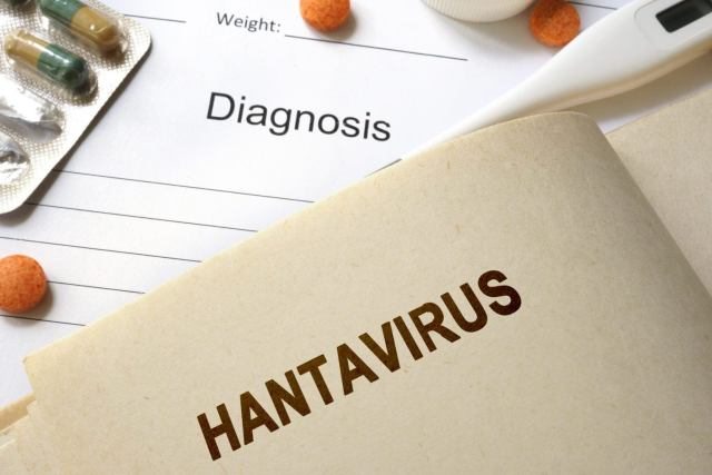 Hantavirus : Another Deadly Virus – Man tested positive to it dies in China