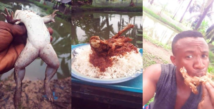 Nigerian man makes stew with Frog - Says it Treat Impotenc* in men (photos)