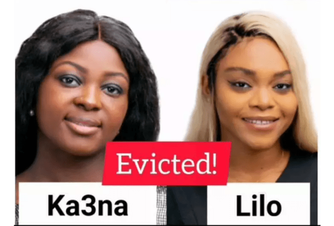 #Bbnaija2020:See The Housemates Who Voted Out Katrina and Lilo For Eviction.