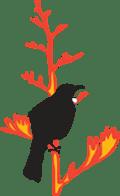 Phoenix Group Evolutionary Ecology & Genetics logo