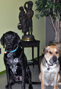 Loki and Abbie, pictured here at ESA headquarters in front of a statue given to C.V. Riley by the government of France, now get heartworm pills all year round.