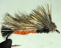 """Nielsen's """"salmon fly"""" mimics a stonefly with its salmon-colored abdomen. Photo by Leslie Mertz."""