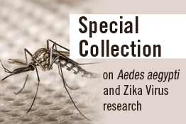 Aedes-Aegypti_Collection_262-ET-Ad-Latest