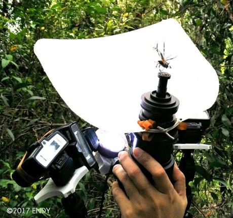 cctv lens photo