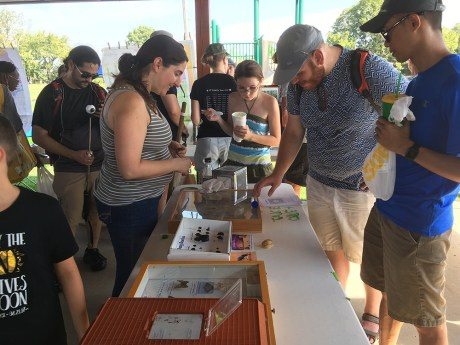 entomology table at eclipse