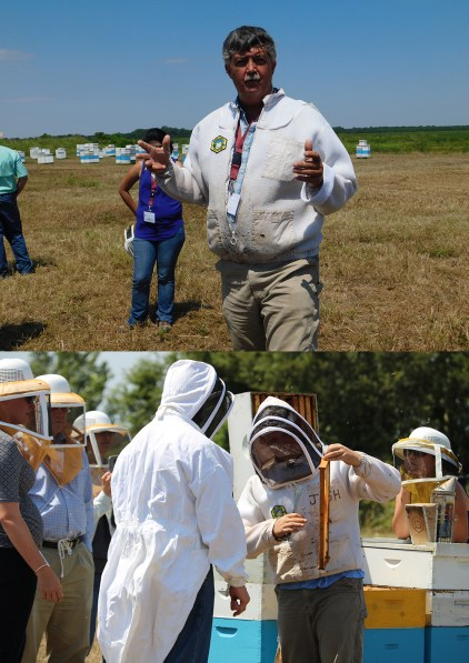 science policy field tour - bee yards