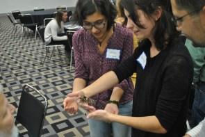Teachers in attendance at the Entomological Foundation's 2017 STEMbugs Workshop meet a tarantula, with facilitator John Guyton, Ph.D., of Mississippi State University.