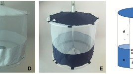 collapsible passive trap for mosquitoes