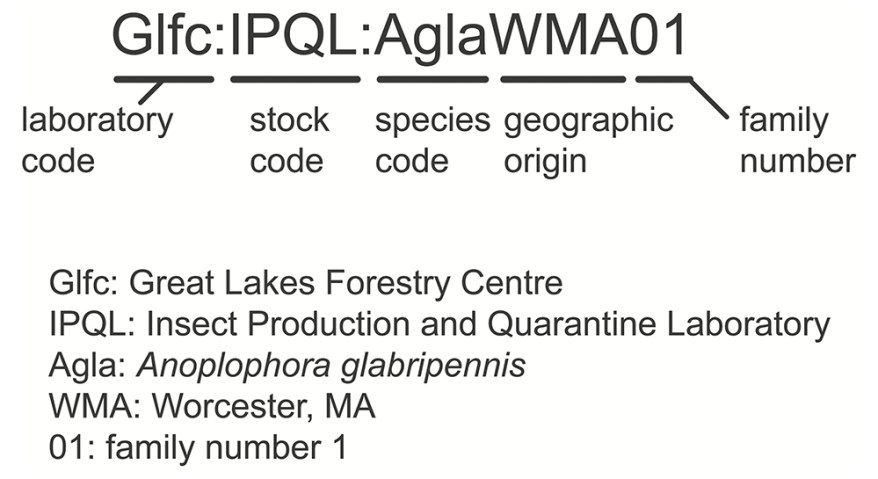 Proposed standard code for IPQL insect stock
