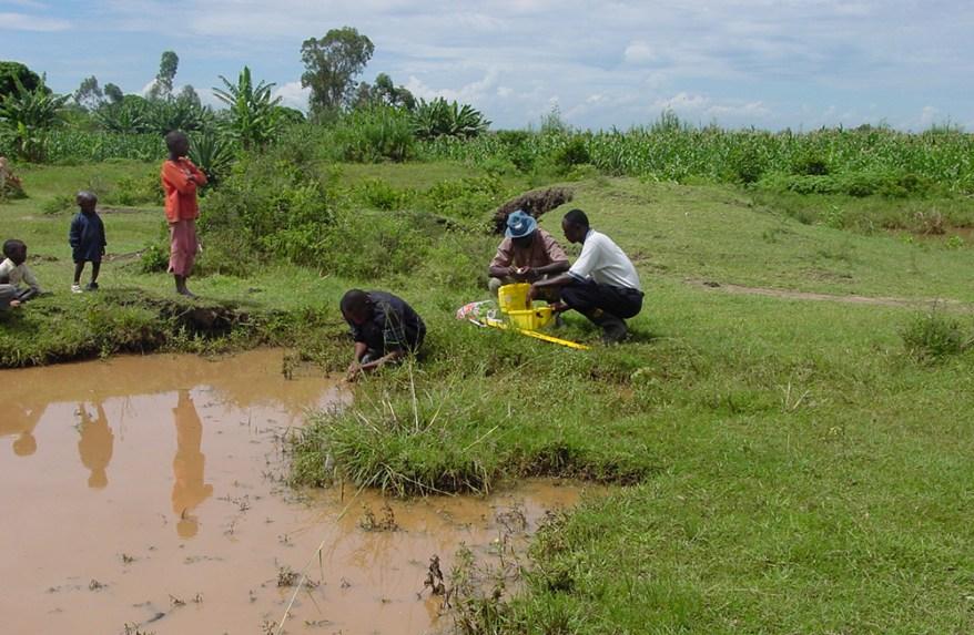 mosquito samping in Kenya
