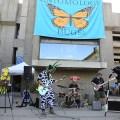UC David Entomology Band