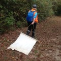 cloth dragging for tick collection