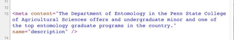 screenshot of the metadata code