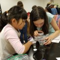 entomology outreach with live insects