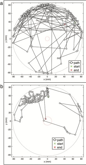 mosquito paths seeking gaps in netting