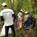 Beetle collecting in Cambodia