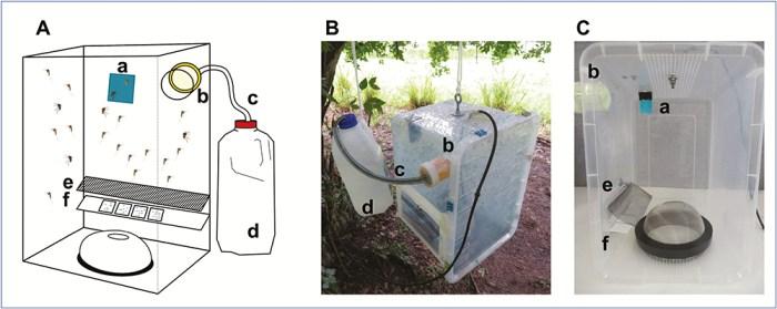 passive box trap modification