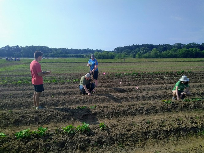 Blubaugh lab students in field