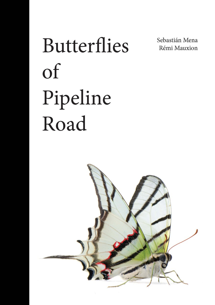 Book cover for Butterflies of the Pipeline Road