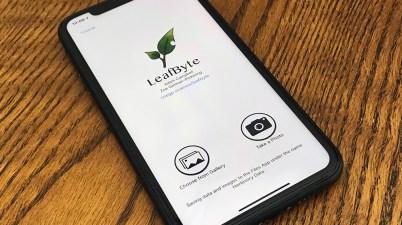 LeafByte on phone