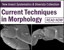 Morphology Collection
