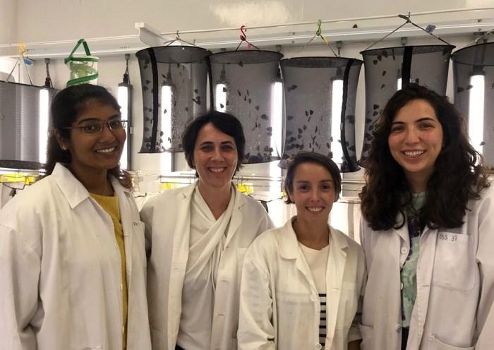 Monteiro Lab researchers