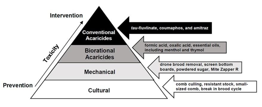 Varroa mite IPM pyramid