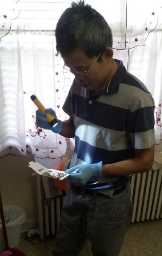 Changlu Wang, Ph.D.
