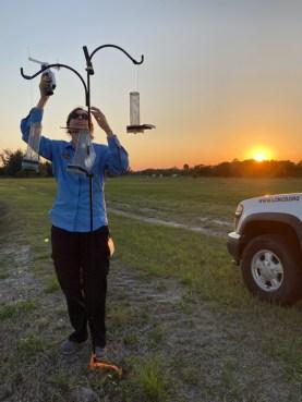 checking mosquito traps