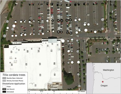 Wilsonville, Oregon, bee kill map