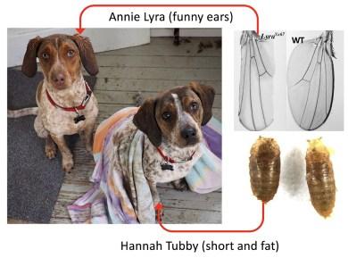 Annie Lyra and Hannah Tubby