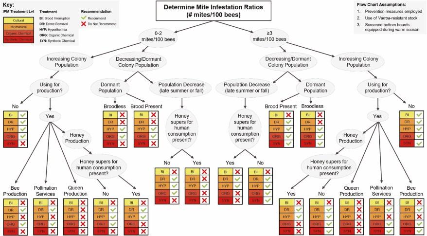 Varroa mite treatment chart