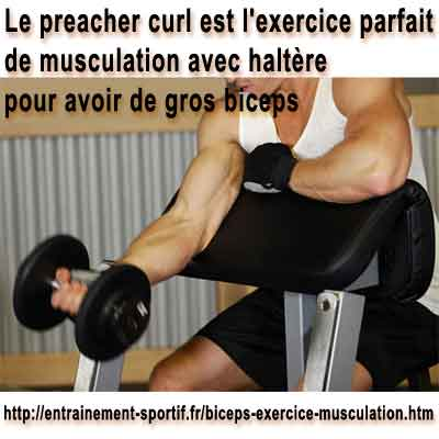 Biceps Brachial 7 Principaux Exercices De Musculation