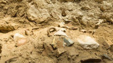 Arqueólogos hallan evidencia de terremoto mencionado en la Biblia