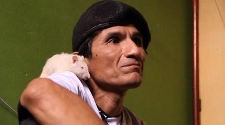 hombre rata guapo