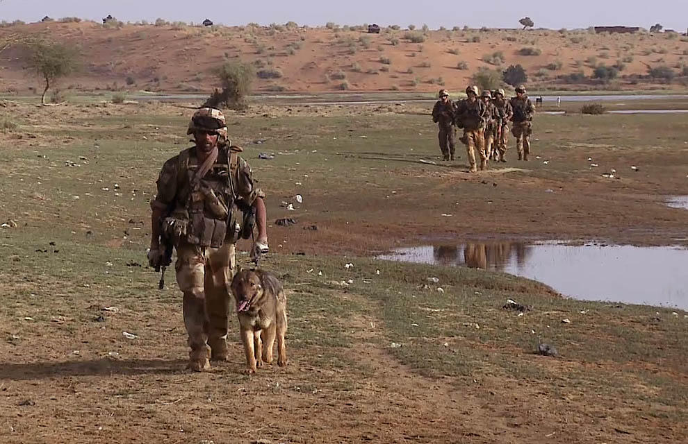 Soldados franceses rastrean una zona a las afueras de la ciudad de Gao. / Defense