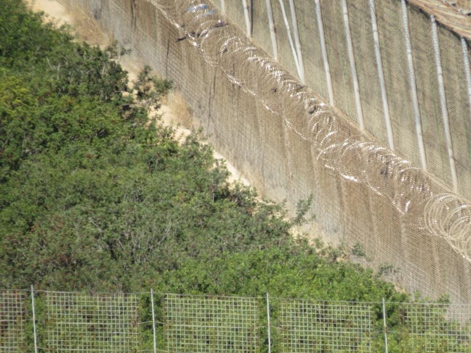 Parte de las concertinas que no fueron retiradas por España en Melilla. / José Palazón