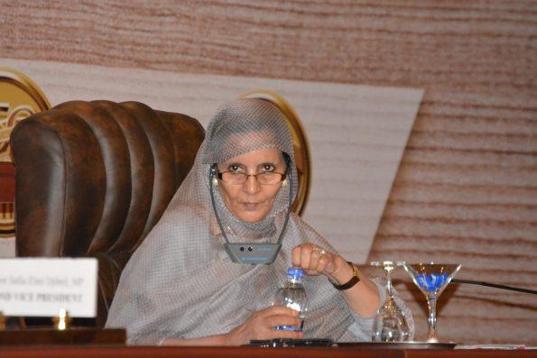 Beiruk durante su participación en el Parlamento Africano. /P.A
