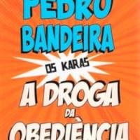 Resenha: A droga da obediência, Pedro Bandeira