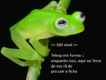100 sinal