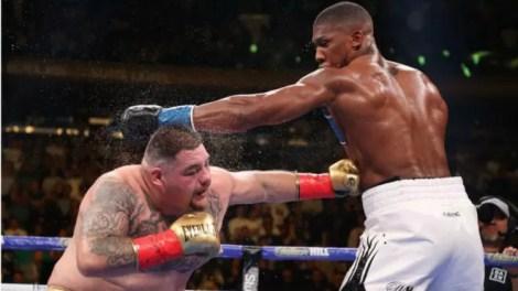 anthony joshua contra andy ruiz en noviembre o diciembre, revancha combate pesos pesados, noticias de boxeo