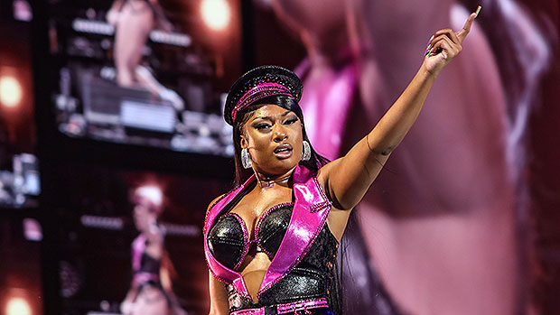 Megan Thee Stallion Slays In Purple Lamé Bustier & Fishnet Tights For 'Made In America' Performance